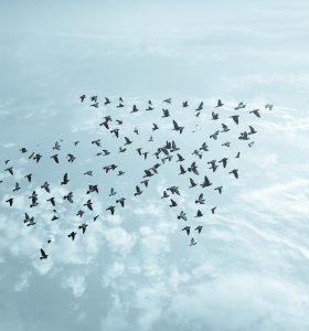 Tendance NO COM - Retrouver du sens Donner des repères pour renforcer l'engagement